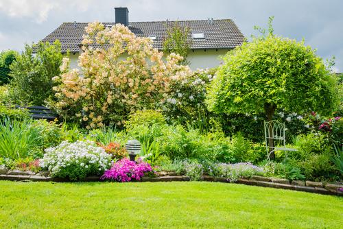 projektowanie i urządzanie ogrodów